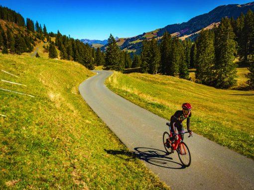 'Tour de Gruyères' by Nierstichting