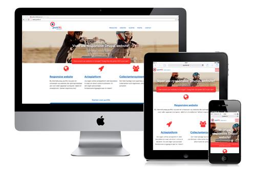 Responsive website puntNL